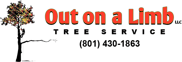 Out On a Limb logo