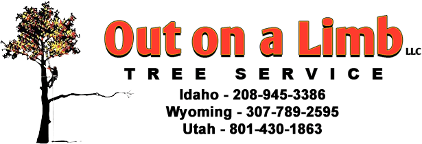 Out On a Limb Tree Service